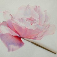 pink-drawing-art-gently-Favim.com-4158668
